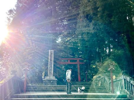 箱根神社へお詣りに…☆