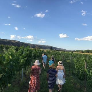 Group in Vineyard.JPEG