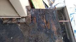 More Bad wood