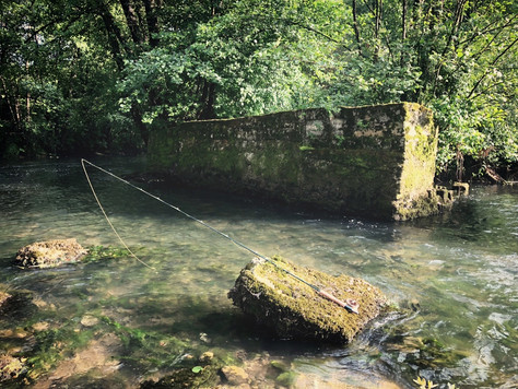 Lustrik Flyfishing Slovenia
