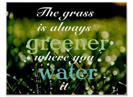 The grass is always greener....