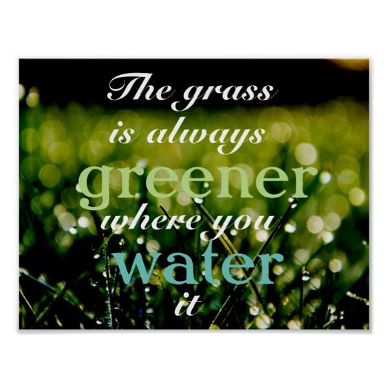 Water your own grass before heading out