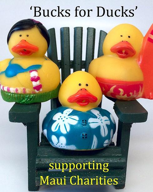 Bucks for Ducks Promo_edited.jpg