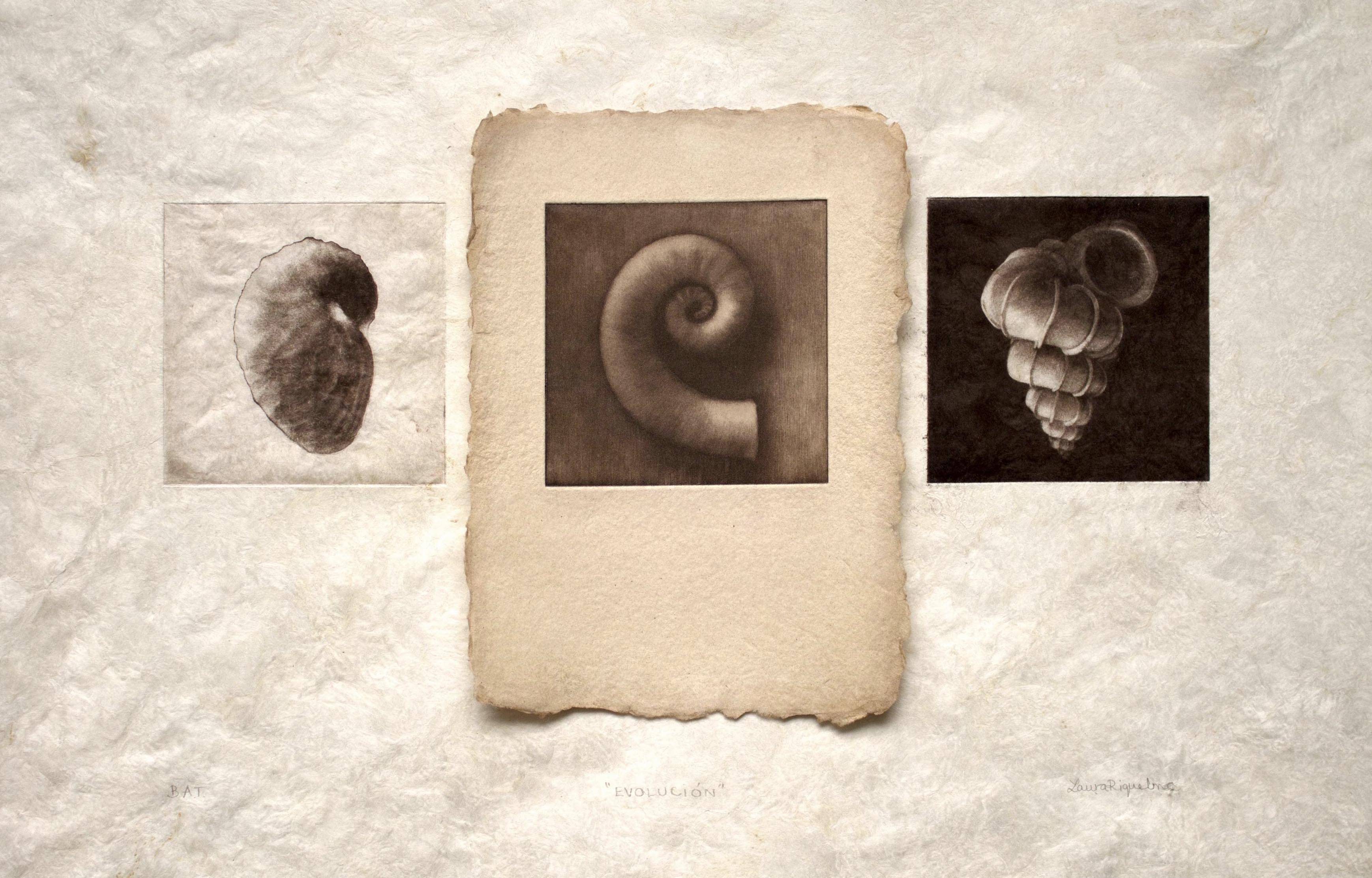 Evolución: pasado, PRESENTE, futuro
