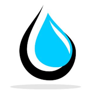Video Logo- Like on the Homepage