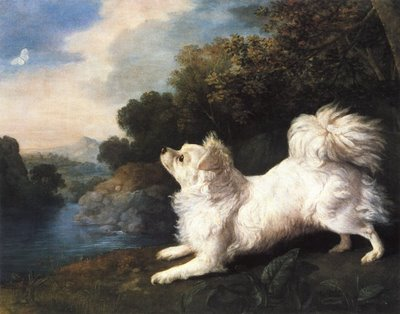 Stubbs-portrait-of-Spanish-Dog-Belonging-to-Mr-Cosway-1775.jpg