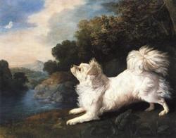 Stubbs-portrait-of-Spanish-Dog-Belonging-to-Mr-Cosway-1775.jpg
