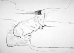 Boodgie-David-Hockney-1993.jpg