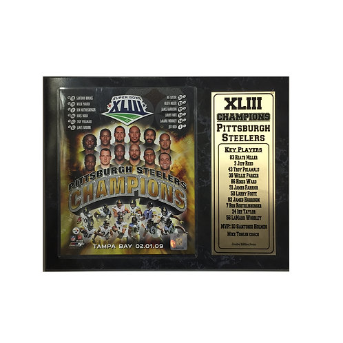 Pittsburgh Steelers Super Bowl 43 Plaque