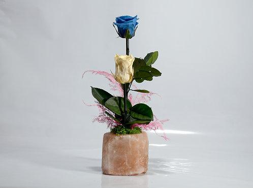 Rosas eternas en piedra de sal
