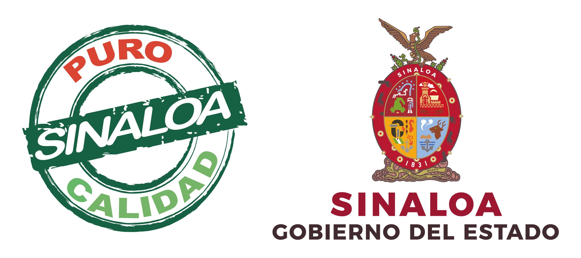 zzc-gobierno-de-sinaloa-7