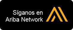 Ariba Network Supplier
