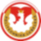 9577_logo,PL,2017.jpg