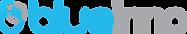 Blueinno_logo_2020_v2.png