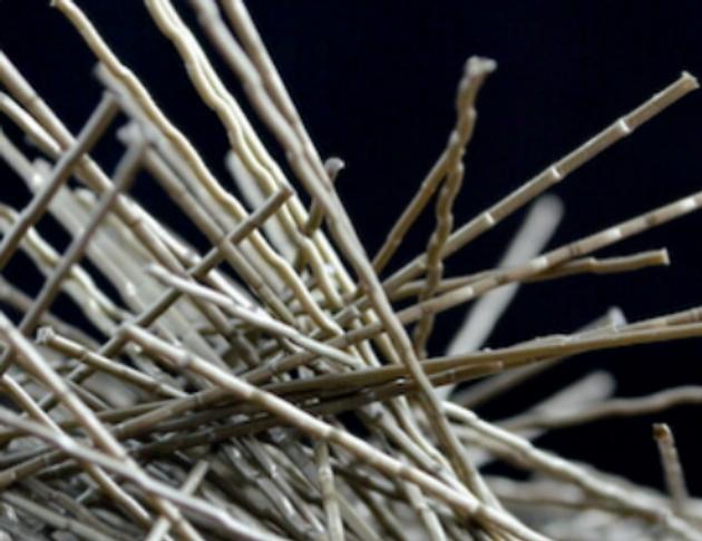 polifibra foto fibras.png