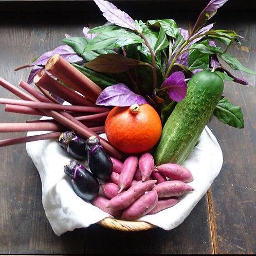 加賀野菜のハコ