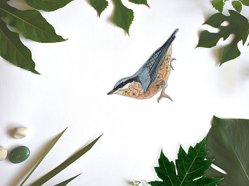 Bird Vinyl Stickers, British Garden Birds Removable Wall Sticker, Nuthatch