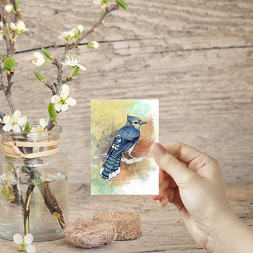 Miniature painting ACEO print Blue Jay bird on a branch tiny art print Bluejay