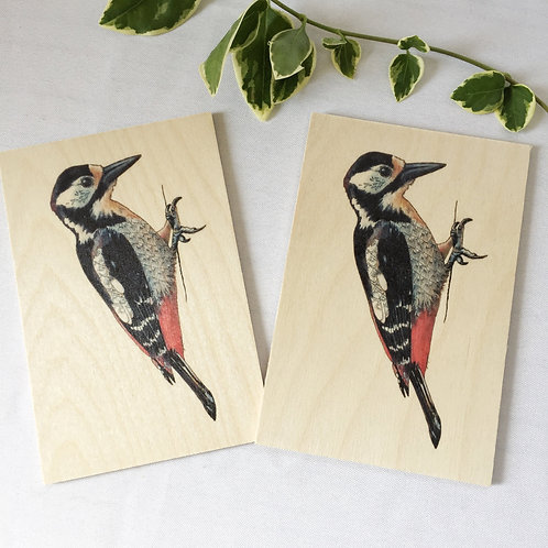 Woodpecker gifts, wood postcards set of 2, Natural decor or Woodpecker card