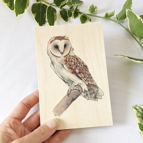 Barn Owl Wooden Post Card Art, Bird of Prey Owl Gifts, Wood Postcard