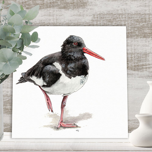 Oyster catcher print, wading bird wall art, limited edition prints, coastal bird