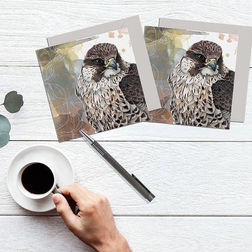 Falcon bird card, set of 2 greeting cards, bird of prey