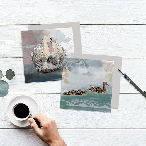 Duckling Card, Baby Swan Card Set of 2, New Mum Card, Nature Art Cards