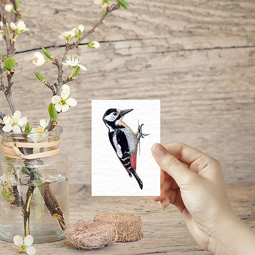 Miniature Woodpecker Print, Tiny Art in the UK, ACEO Print, Mini British Birds