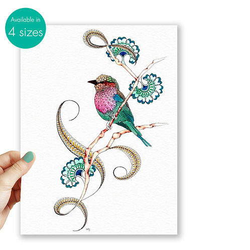 Bird art print Lilac Breasted Roller, nature illustration gift for women tropica