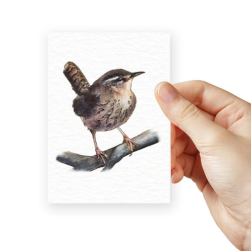 Tiny Wren Print ACEO Mini British Garden Birds Print, Cute Birds Miniature Art