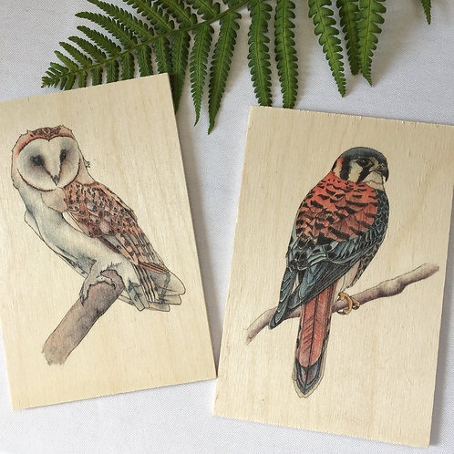 Wood postcards set of 2, Barn Owl and Kestrel birds of prey, Unique gift or natu