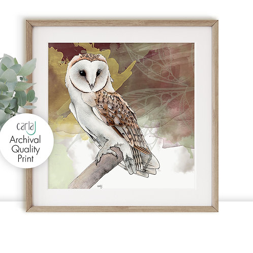 Barn Owl print, Wildlife art, Owl gifts for the Bird watcher, Bird of prey illus