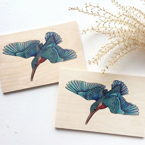 Wood postcard pack of 2, Kingfisher art, bird gifts postcard set