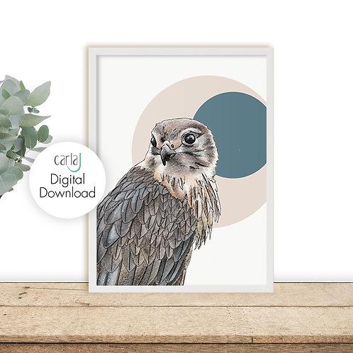 Bird of Prey Printable Art, Scandi Downloadable Print, Wildlife Art, Bird illust