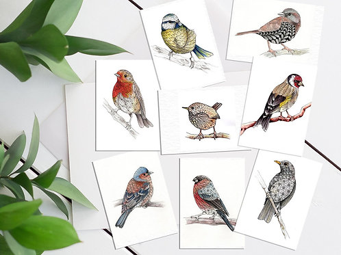 Mini print set of 8 ACEO cards british garden birds tiny art prints mini birds