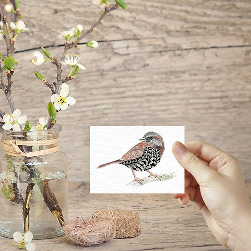 Sparrow bird print british garden birds ACEO print miniature prints tiny art