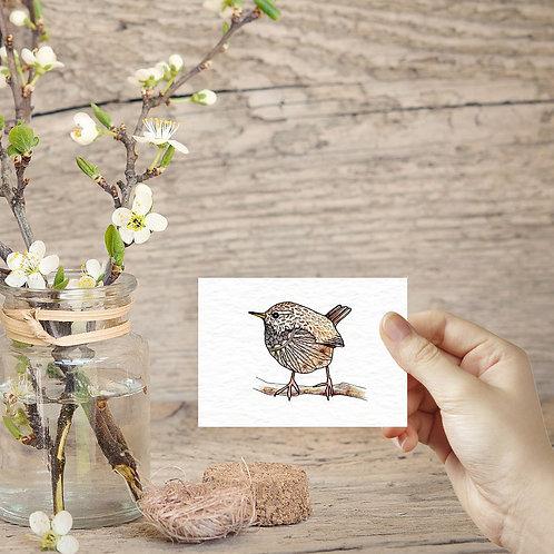 Wren art ACEO print miniature art print british garden birds tiny art print