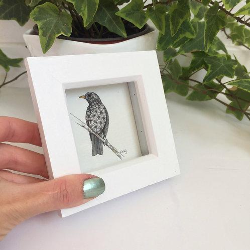 Tiny Framed Blackbird Gift Art Print, Cute Bird Gifts Mini Framed Art Prints