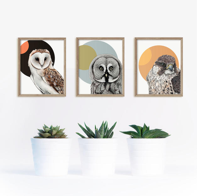 Art Print Sets