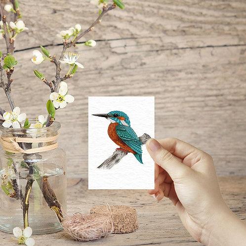 Tiny art print miniature prints Kingfisher art ACEO print nature lover mini art
