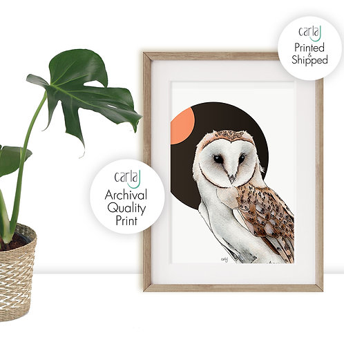 Barn Owl Art Nature Prints, Bird of Prey Owl Print, Scandinavian Wall Art, Wildl