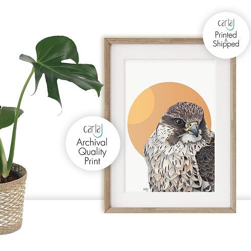 Bird of Prey Falcon Print, Orange Scandinavian Wall Art, Wildlife Art for the Bi