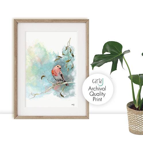 Robin Watercolour Painting, Bird art print, Robin Red breast Print, Relaxing Wal