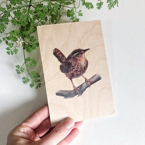 Wren Wooden Postcard, Cute Bird Art, British Garden Birds Print on Wood