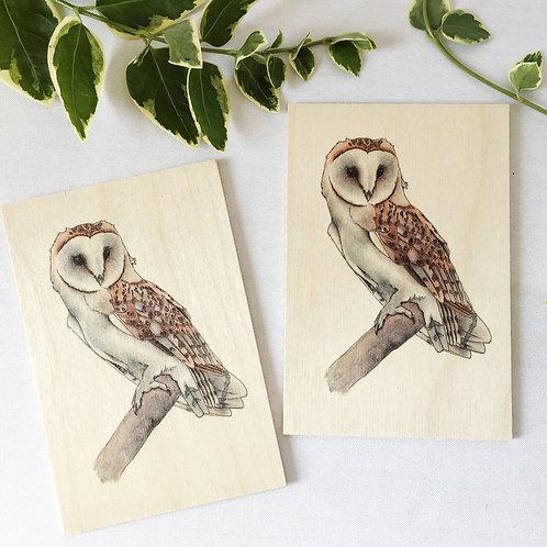 Barn Owl Wooden post card set of 2, Bird of prey, Unique bird watcher gift or na