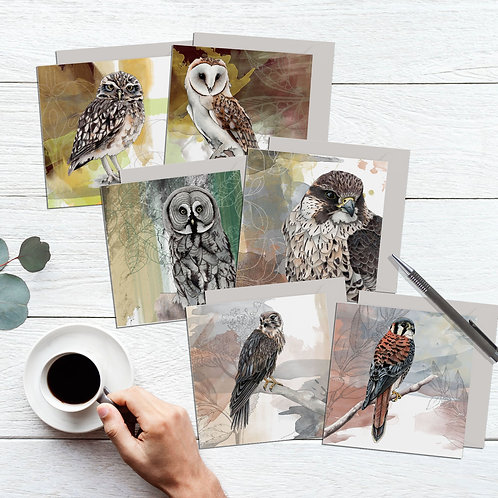 Birds of prey art cards, Set of 6 bird cards, Owl lover & bird watcher gift
