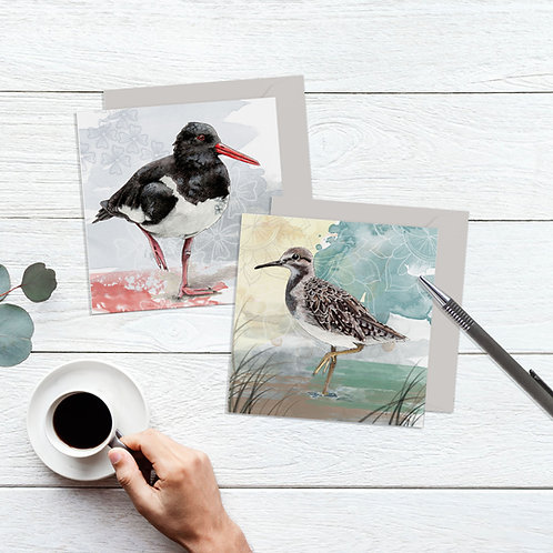 Bird Card Set, Pack of 2 Blank Cards, Nature Art Cards, Sandpiper Art Card, Oyst