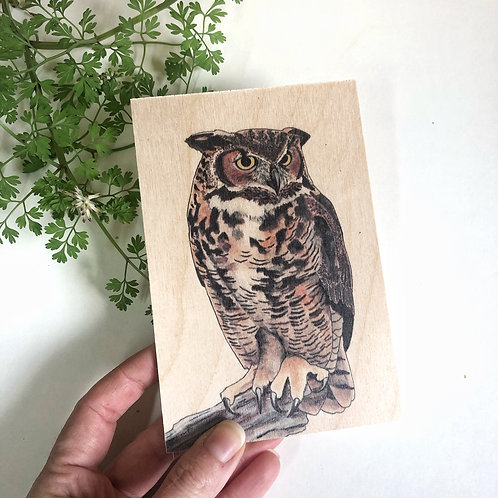 Owl Wooden Postcard, Unique Bird of Prey Gift, Wood Postcard, Natural Owl Gifts