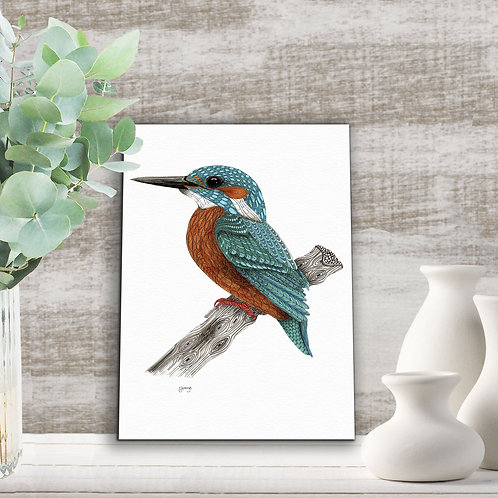 Kingfisher art print, Teal wall art, Bird art, Blue bird illustration print