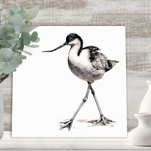 Wading bird black & white wall art, Avocet limited edition nature prints